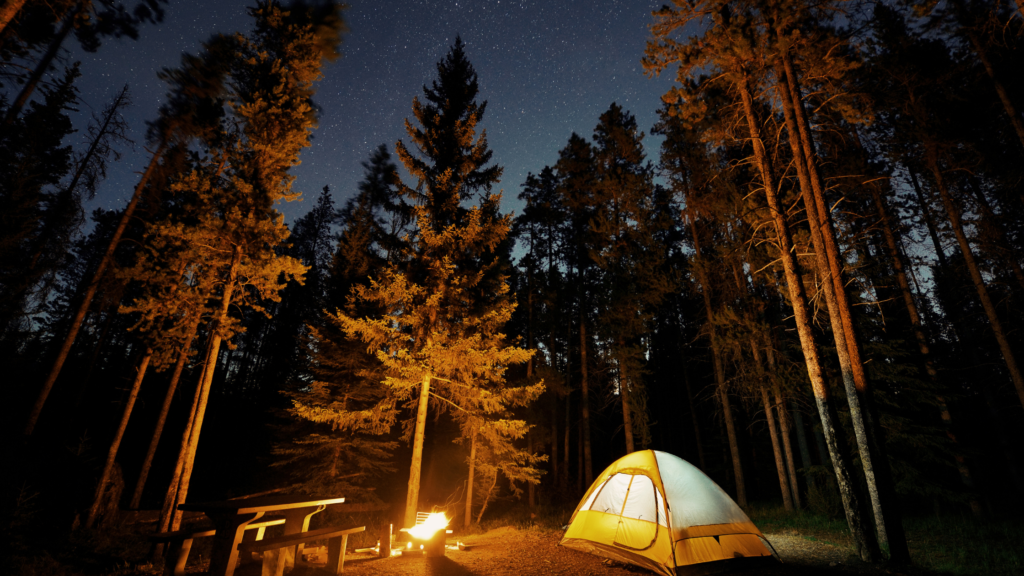 Camping Must Haves for Families